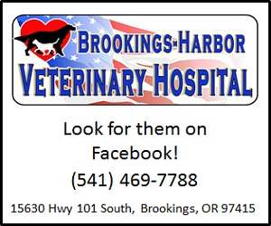 Brookings-Harbor-Vet-300x250